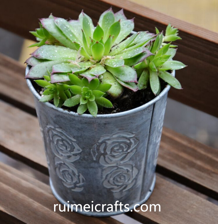 metal garden pot with rose pattern