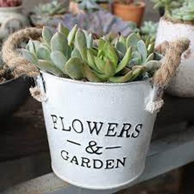 ROUND METAL FLOWER POT WITH HANDLE